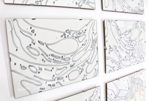 Matter Drawings; Collection #2, detail